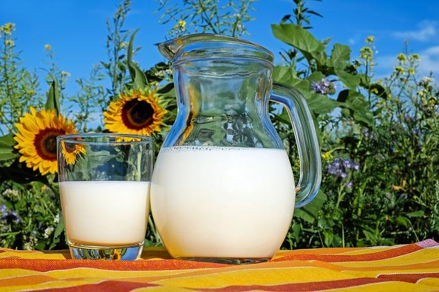 latte vegetale per l'infanzia