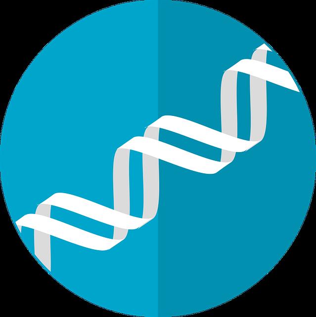 la medicina anti aging indaga il genoma