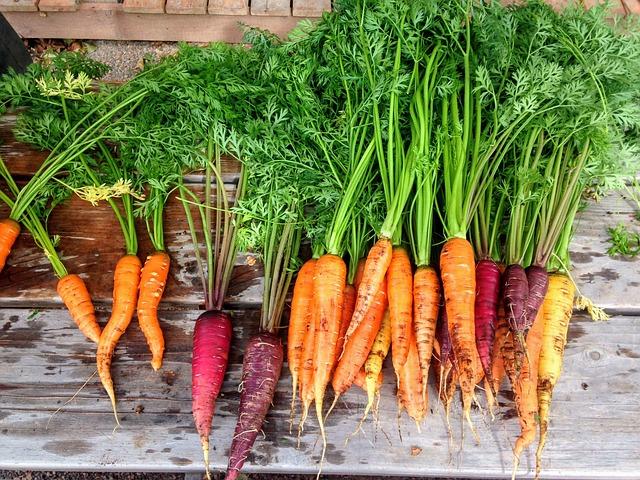 spaghetti di verdure carote