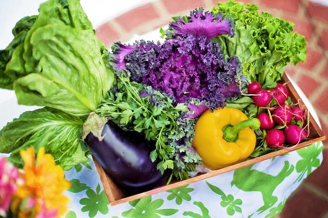alimentazione Maurizio Falasconi frutta e verdura