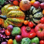 Alimentazione vegana e sport: Iron Manager e la dieta del Gladiatore