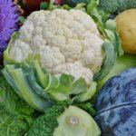 Ricette vegane golose, facilissime e veloci da preparare